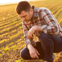 visuel-agriculteur